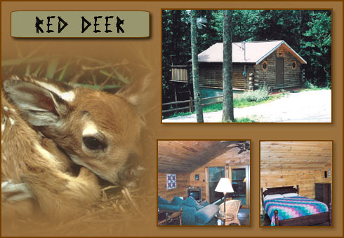 Hocking Hills Cabin Rentals at Deer Watch Cabins